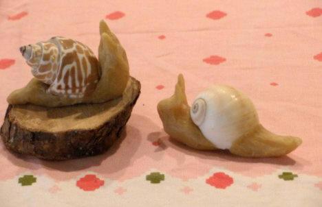 Snail11 crop
